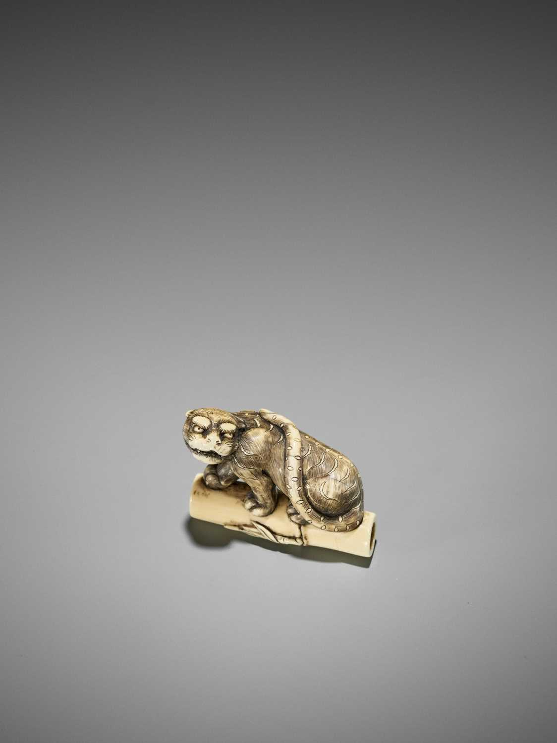 Lot 66-AN EXCELLENT KYOTO SCHOOL IVORY NETSUKE OF A TIGER ON BAMBOO