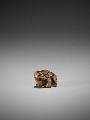 Lot 17 - AN EARLY WOOD NETSUKE OF A TOAD