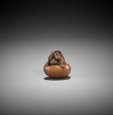 Lot 117 - A TANBA SCHOOL WOOD NETSUKE OF A MONKEY EMERGING FROM A PEACH