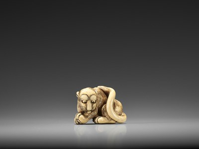 Lot 189 - AN EXCELLENT KYOTO SCHOOL IVORY NETSUKE OF A GROOMING YOUNG TIGER