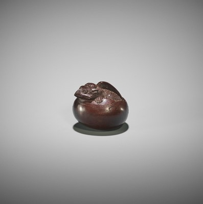 Lot 163 - DEME MASAHIDE: A WOOD NETSUKE OF A HATCHING TENGU (TENGU NO TOMAGO)
