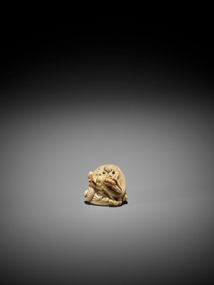 Lot 58 - A POWERFUL IVORY NETSUKE OF A DRAGON, ATTRIBUTED TO MITSUHARU