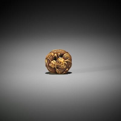 Lot 193 - ANRAKU: A FINE IVORY NETSUKE OF A COILED DRAGON