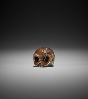 Lot 129 - A FINE WOOD NETSUKE OF A SKULL WITH BAMBOO SHOOT