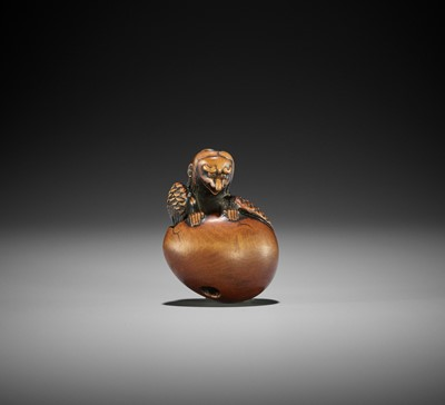 Lot 118 - TOYOYO: A SUPERB WOOD NETSUKE OF A HATCHING TENGU