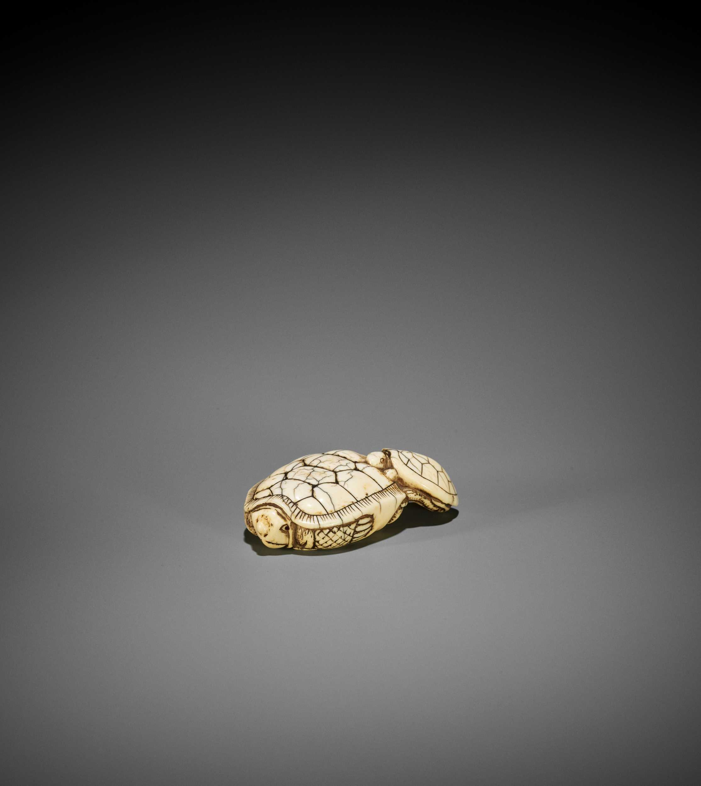 Lot 36 - AN OLD IVORY NETSUKE OF A TURTLE WITH YOUNG