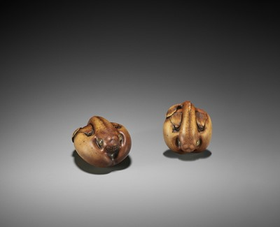 Lot 161 - HIDE: AN UNUSUAL WOOD NETSUKE OF A FUGU