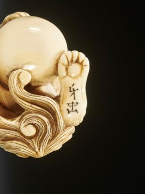 Lot 62 - GECHU: AN IVORY NETSUKE OF A SHISHI WITH BALL