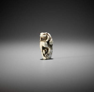 Lot 216 - AN UNUSUAL MARINE IVORY NETSUKE OF A TOAD WITH CRAB AND LOTUS