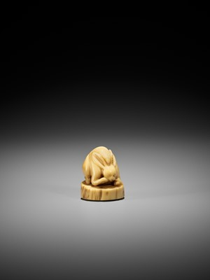 Lot 62 - A VERY RARE NARWHAL TUSK NETSUKE OF A RABBIT WITH REISHI