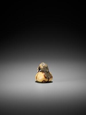 Lot 69 - ANRAKU: A FINE IVORY NETSUKE OF A CROW ON PERSIMMON